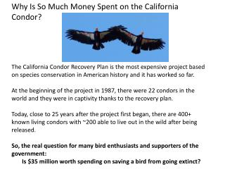 Why Is So Much Money Spent on the California Condor?