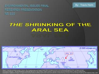 ENVIRONMENTAL ISSUES FINAL RESEARCH PRESENTATION NS 110