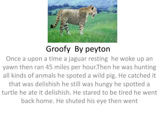 Groofy  By  peyton