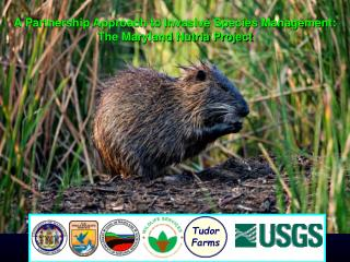 A Partnership Approach to Invasive Species Management: The Maryland Nutria Project