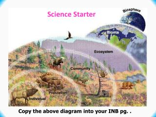 Copy  the  above diagram  into your  INB pg. .