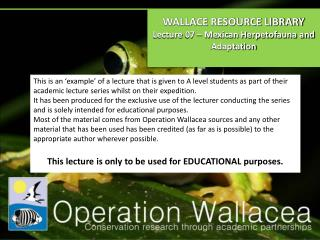 WALLACE RESOURCE LIBRARY Lecture  07  –  Mexican Herpetofauna and Adaptation
