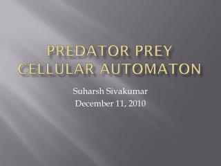 Predator prey cellular automaton