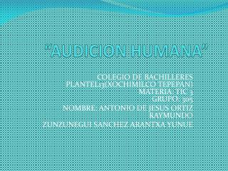 """AUDICION HUMANA"""