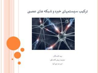 ترکیب سیستمهای خبره و شبکه های عصبی