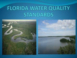 FLORIDA WATER QUALITY STANDARDS