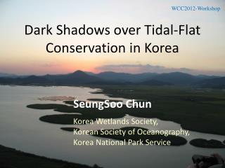 Dark  Shadows over  Tidal-Flat  Conservation in Korea