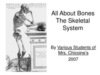 All About Bones The Skeletal System
