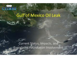 Gulf of Mexico Oil Leak