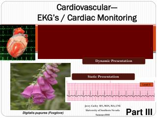 Cardiovascular---  EKG's / Cardiac Monitoring