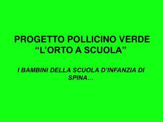 """PROGETTO POLLICINO VERDE """"L'ORTO A SCUOLA""""  I BAMBINI DELLA SCUOLA D'INFANZIA DI SPINA…"""
