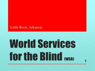 World Services for the Blind  (WSB)