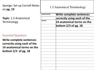 Sponge: Set up Cornell Notes on  pg. 19 Topic : 1.5 Anatomical Terminology Essential Question :