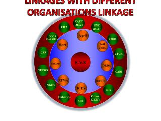 LINKAGES WITH DIFFERENT  ORGANISATIONS LINKAGE