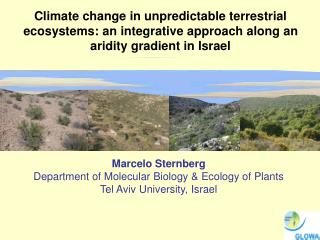 Marcelo Sternberg Department of  Molecular Biology & Ecology of Plants