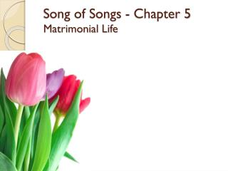 Song of Songs - Chapter 5 Matrimonial  Life