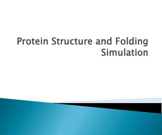 Protein Structure and Folding Simulation