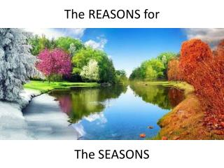 The REASONS for