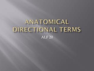 Anatomical Directional Terms