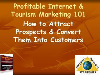 Profitable Internet  Tourism Marketing 101