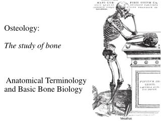 Osteology: The study of bone  Anatomical Terminology  and Basic Bone Biology