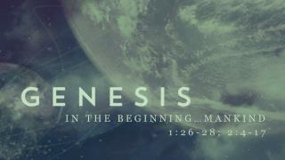 In the Beginning…Mankind 1:26-28; 2:4-17