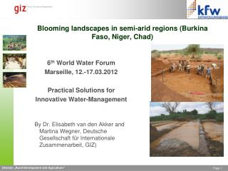 Blooming landscapes in semi-arid regions  (Burkina Faso, Niger, Chad)