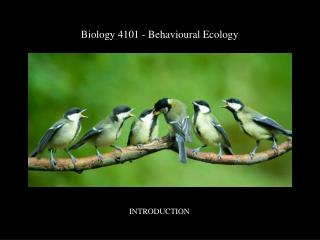 Biology 4101 -  Behavioural  Ecology