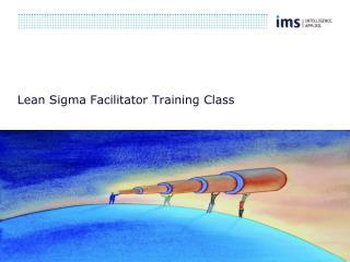 Lean Sigma Facilitator Training Class