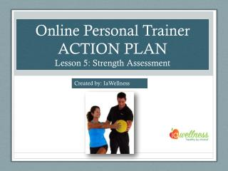 Online Personal Trainer ACTION PLAN Lesson 5: Strength Assessment