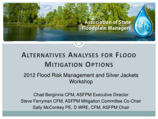 Alternatives Analyses for Flood Mitigation Options