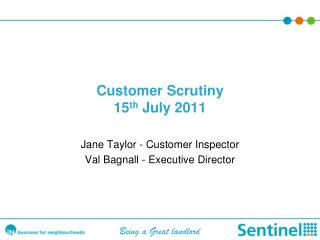 Customer Scrutiny 15 th  July 2011