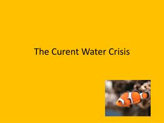 The  Curent  Water Crisis