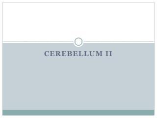 Cerebellum II