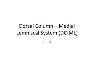 Dorsal Column – Medial  Lemniscal  System (DC-ML)