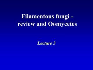 Filamentous fungi - review and Oomycetes