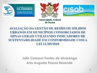 Júlio Campos Fontes de Alvarenga Ana Augusta Passos Resende