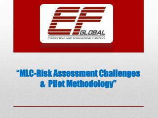 """ MLC-Risk Assessment Challenges &  Pilot Methodology"""