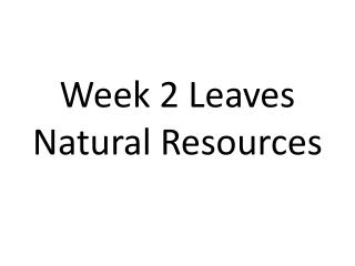 Week 2 Leaves Natural Resources