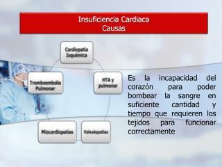 Insuficiencia  Cardiaca Causas