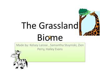 The  G rassland Biome