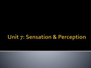 Unit 7: Sensation & Perception