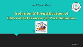 Isolation  &  Identification of  Enterobacteriaceae &  Pseudomonas