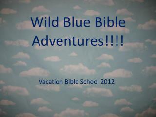 Wild Blue Bible Adventures!!!!