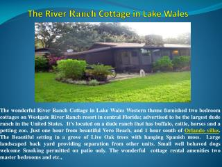 The Great Landscaped Of Vacation Home Rentals