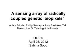 A sensing array of radically coupled genetic 'biopixels'