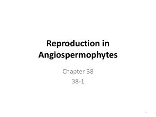 Reproduction in Angiospermophytes
