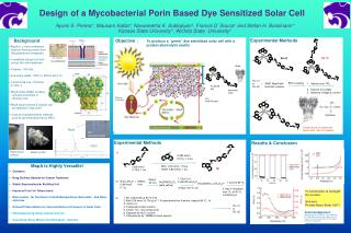 Design of a Mycobacterial Porin Based Dye Sensitized Solar Cell