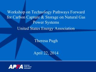 Workshop on Technology Pathways Forward for Carbon Capture & Storage on Natural Gas Power Systems