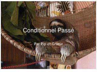 Conditionnel  Pass é
